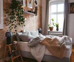 Adult, apartment, and bed image