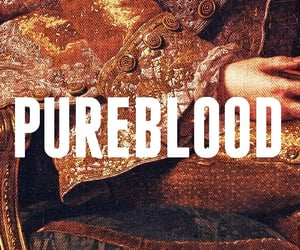 golden, purity, and pureblood image