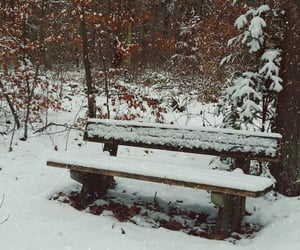 enjoy, nature, and snow image