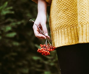 aesthetic, berries, and girl image
