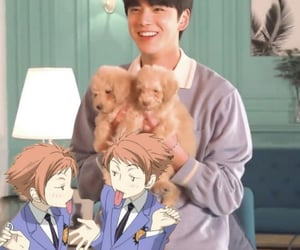 kpop and puppy image