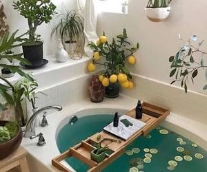 bath, water, and love image