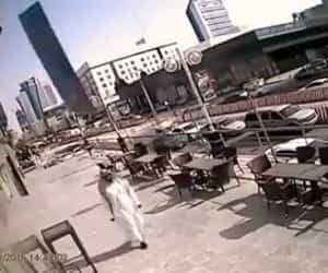 video, الله, and واتساب image