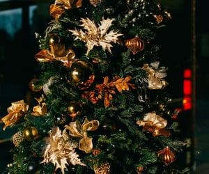 christmas, christmas lights, and winter image