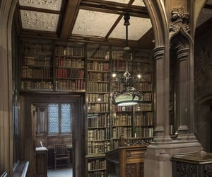 aesthetic, library, and books image
