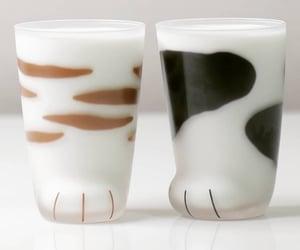 beige, cat, and milk image
