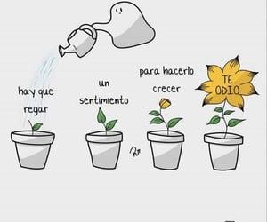 frases, frases en español, and sentimiento image