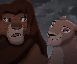 animals, disney, and lion image