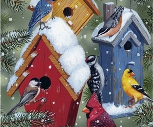 winter, bird house, and snow image