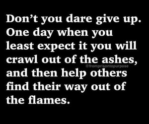 don't give up, phoenix, and positive vibes image