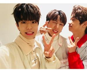 felix, seungmin, and 스트레이키즈 image