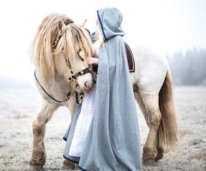 horse, fantasy, and princess image