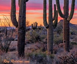 arizona, vibrant, and sunsets image