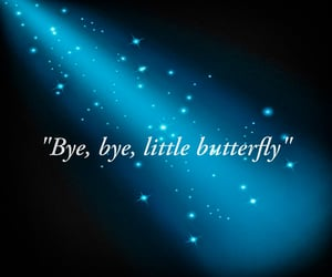 butterfly, ladybug, and quote image
