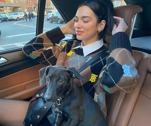 dua lipa, girl, and puppy image