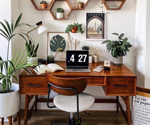 nature, plants, and and desk image image