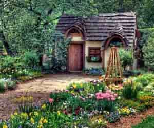beauty, flowers, and gardens image