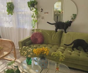 aesthetic, cat, and green image