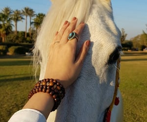 Braclet, ring, and white image