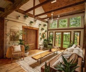 decor, home, and plants image