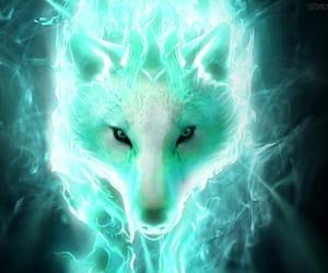 kitsune image