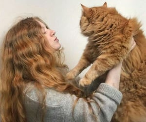 cat, girl, and ginger image