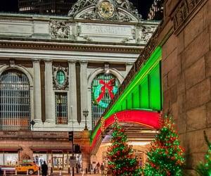christmas lights, christmas tree, and festive image