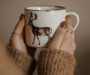 beautiful, coffee, and mug image