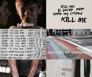 aesthetic, newt, and newton image