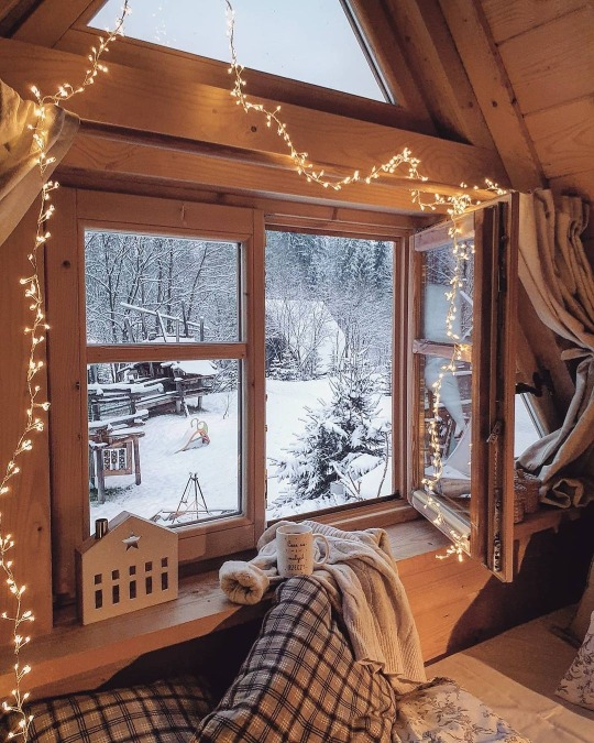 cozy, winter, and christmas image