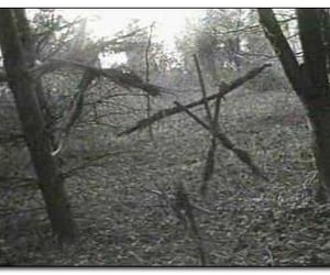 creepy, forest, and horror image