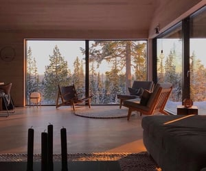 forest, home, and window image