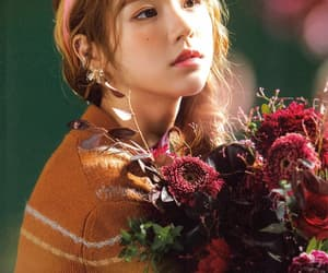 beautiful, flower, and hq image