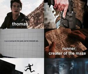 thomas, maze runner, and maze runner aesthetic image