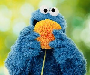 cookie monster, sesame street, and the muppets image