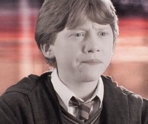 rupertgrint, ronweasley, and harrypotter image