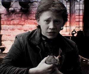 harrypotter, rupertgrint, and ronweasley image
