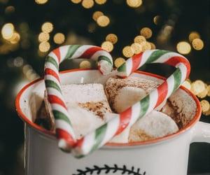 candy cane, christmas, and christmas lights image