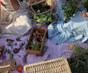 flowers, nature, and picnic image