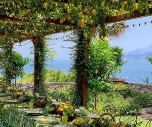 lemons, green, and italy image