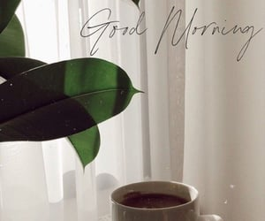 coffee, drink, and good morning image