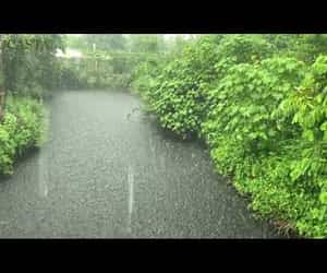 rain, relaxing sounds, and heavy thunder image