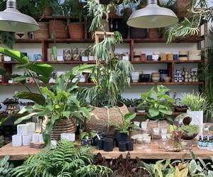 aesthetic, flowershop, and bg image