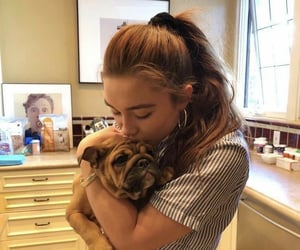 dog, florence, and pugh image