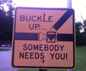 drive, safety, and seatbelt image
