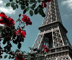paris, wallpaper, and flowers image
