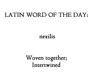 latin, quotes, and words image