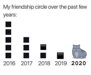 2020, alone, and animal image