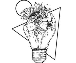 flower, black, and broken image