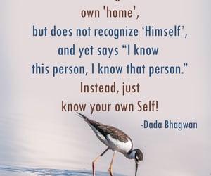 self, dada bhagwan, and soul image